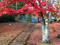 土津神社の紅葉が見頃
