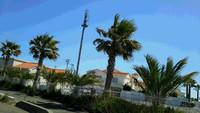 海岸線の住宅展示場