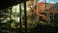 飯坂温泉 大鳥の紅葉