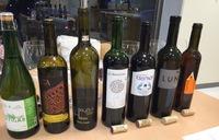 3月の東部ガス様ワイン講座 テーマ「スペインワイン」 チャコリなど