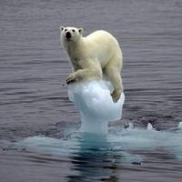 <地球の平均気温>2010年は観測開始以来、最も高温か
