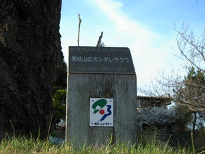 クラシカ sakura★