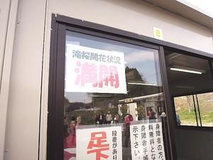 クラシカ 桜紀行★