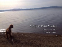MAPLE Petit Market ご案内①