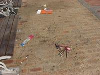 9月、永崎海水浴場のゴミ拾い