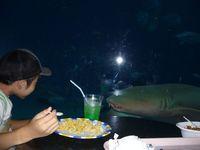 美ら海水族館  家族旅行2