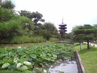 京都の寄り道2