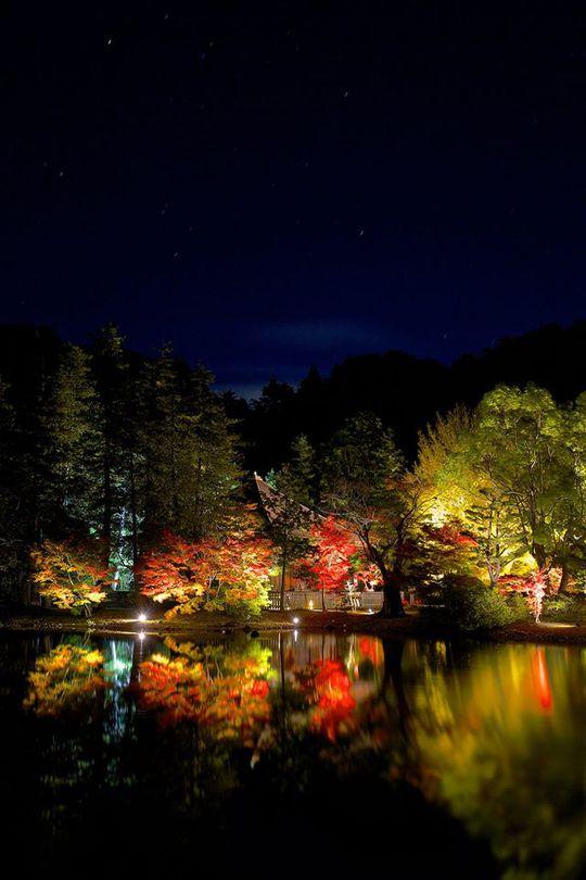 国宝 白水阿弥陀堂 紅葉ライトアップ2014