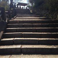 この季節になると気になる、松ヶ岡公園の今〜/いわき桜の名所2014