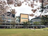 桜とアリオス@平中央公園/いわき桜2015