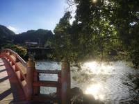 国宝白水阿弥陀堂紅葉ライトアップ迫る!/浄土庭園をスマホで撮ってみた。