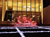 いわきを彩るイルミネーションコレクション・2014冬