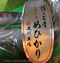 メヒカリの天ぷら!そして、メヒカリの刺し身?!