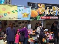 茅ヶ崎の湘南祭にことしもいわきが出店!フラおじさんも