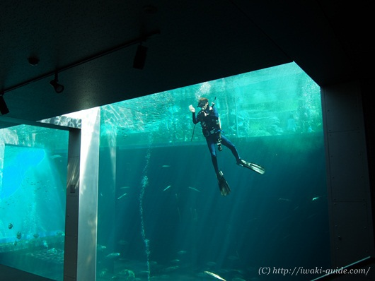 小名浜観光 水族館