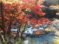 夏井川渓谷 背戸峨廊~籠場の滝~錦展望台 いわき観光