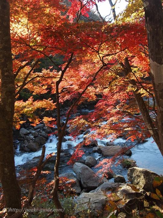いわき観光 夏井川渓谷