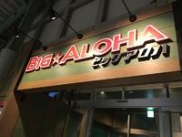 ハワイアンズ日本一のウォータースライダービッグアロハの場所や待ち時間、感想など #ビッグアロハ