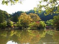 国宝・白水阿弥陀堂で新緑の季節を満喫。