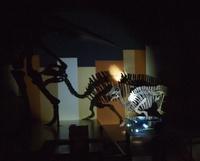 懐中電灯を持ってほるるナイトミュージアムにいってみた。