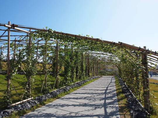 アクアマリンふくしま 小名浜観光 くずのトンネル