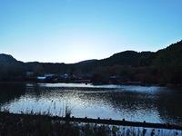 夕暮れどきの浄土庭園/白水阿弥陀堂 紅葉情報