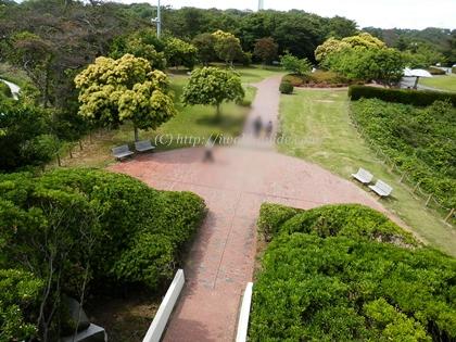 いわき市観光おすすめスポット 三崎公園の三崎汐見台