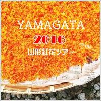 ◆手染メ屋さんの山形紅花ツアー前篇◆