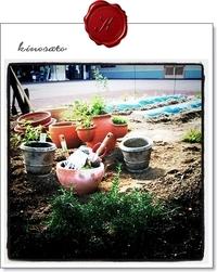 続◆庭師になってみたり(*^ω^*)