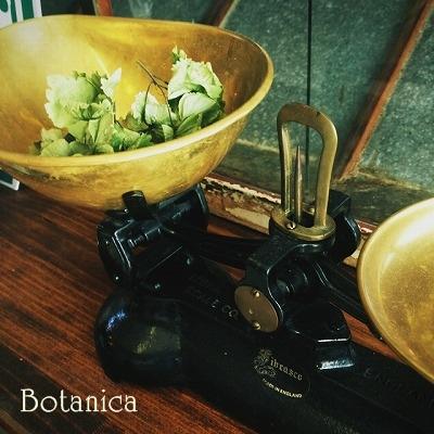 本日お休みです@Botanica