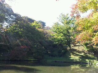 霞ヶ城公園へ、ぶらりお散歩^^