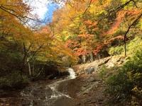 安達太良山、奥岳の紅葉