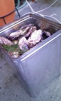 一斗缶☆牡蠣