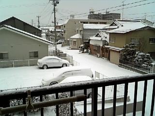 雪は明るかったよ♪