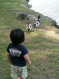 南湖公園で。
