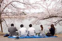 五百淵でSNAP 2010/04/27 20:00:00
