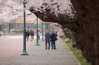 日大でSNAP 2010/04/29 20:00:00