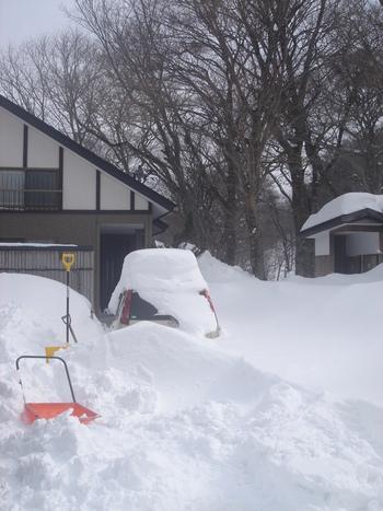 雪・雪・雪!!