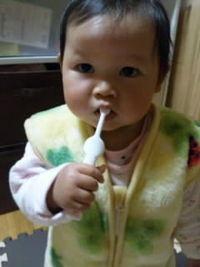 食事の後は歯磨き(^◇^)