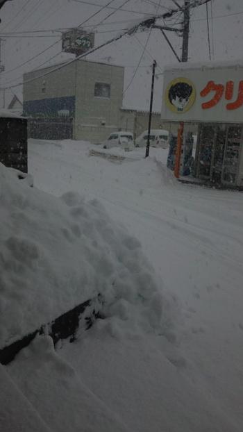 凄い雪です