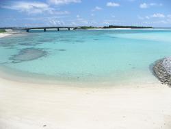 野甫島の米崎海岸