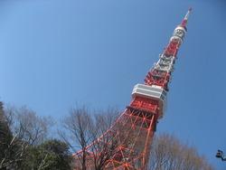 東京タワー 沖縄料理店