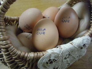 おこげのゆるゆると 絶品卵