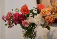 花たちの語らい