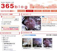 フォトラバテーマ「桜」開設しました!