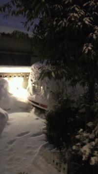 すげーな、この雪・・・。( ̄Д ̄;)