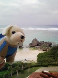 沖縄♪再来♪