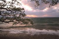 猪苗代湖の夕日と打ち寄せる波に圧倒されました。