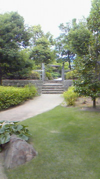 21世紀記念公園内です(ノ´∀`*)