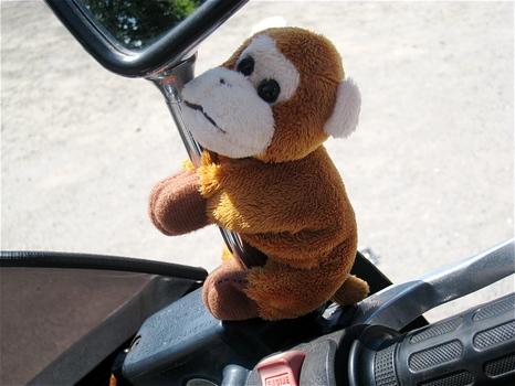 Bike de Go!! 第2弾(布引山編)